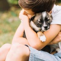 Τι προσφέρει η ύπαρξη ενός κατοικίδιου ζώου σε μία οικογένεια ;